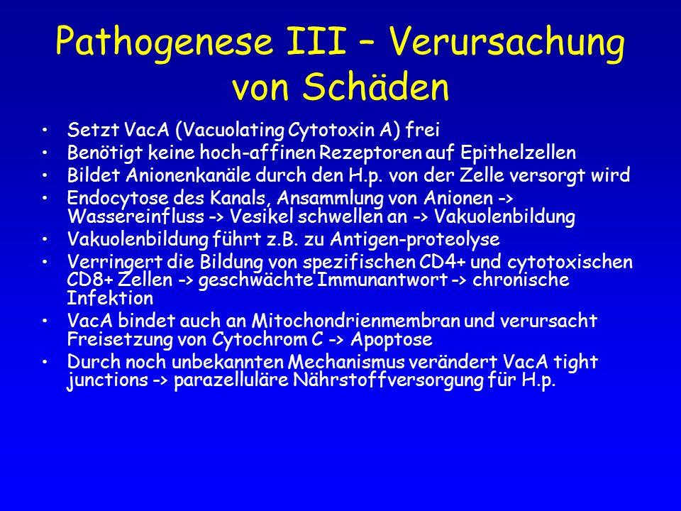 Pathogenese III – Verursachung von Schäden