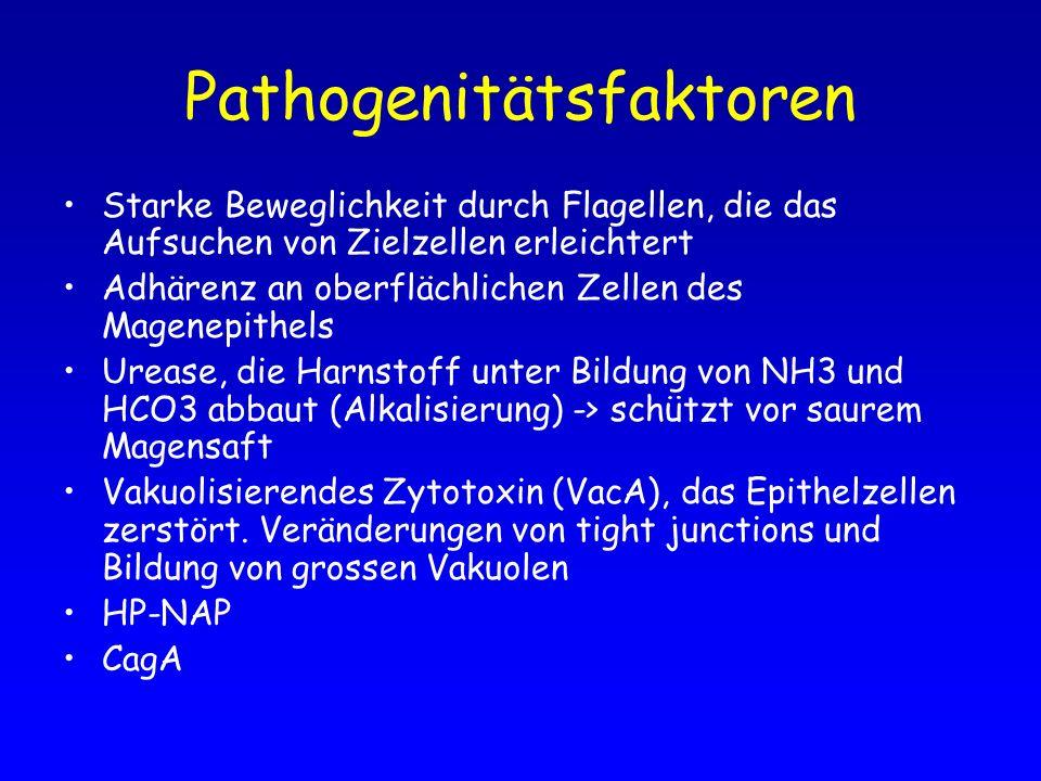 Pathogenitätsfaktoren
