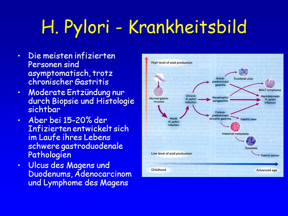 H. Pylori - Krankheitsbild