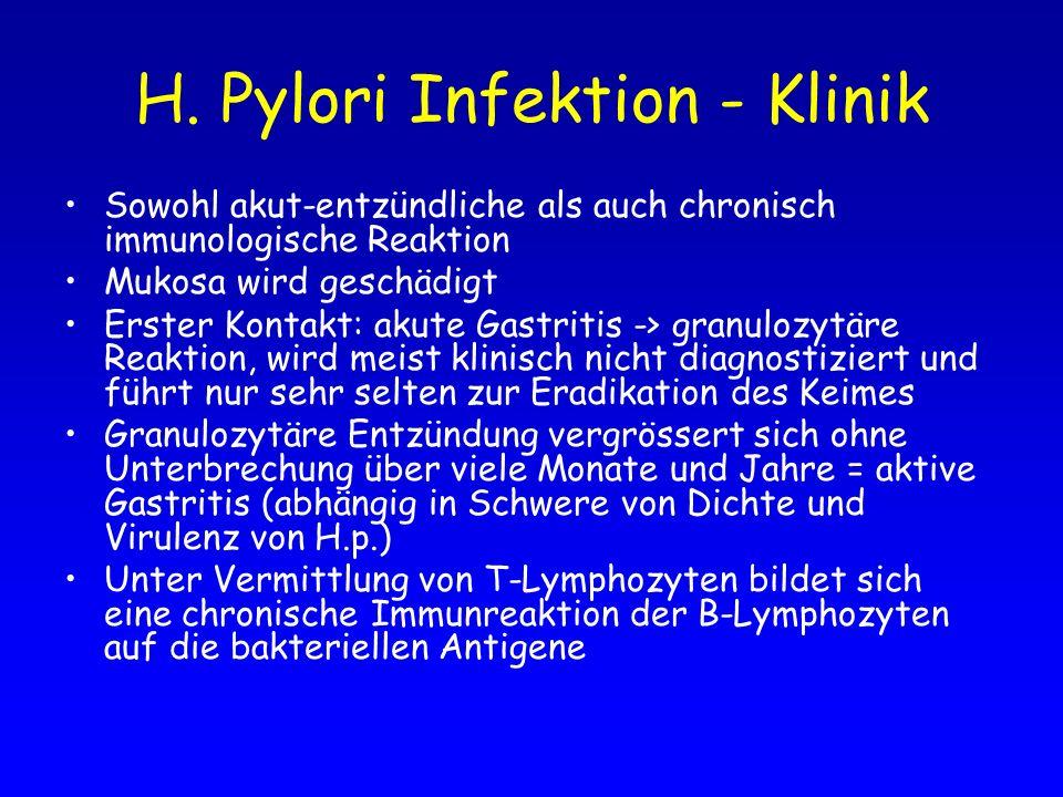 H. Pylori Infektion - Klinik