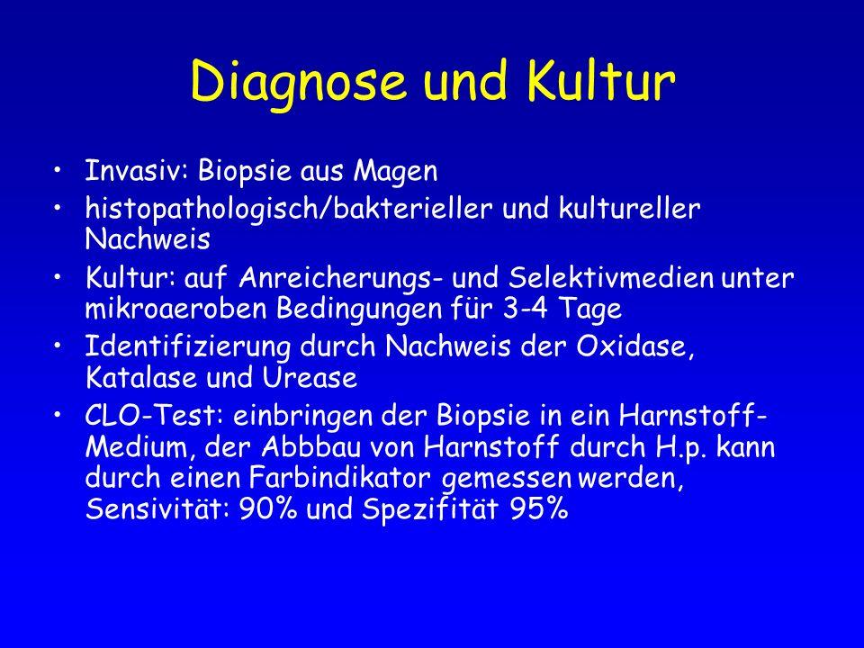 Diagnose und Kultur Invasiv: Biopsie aus Magen
