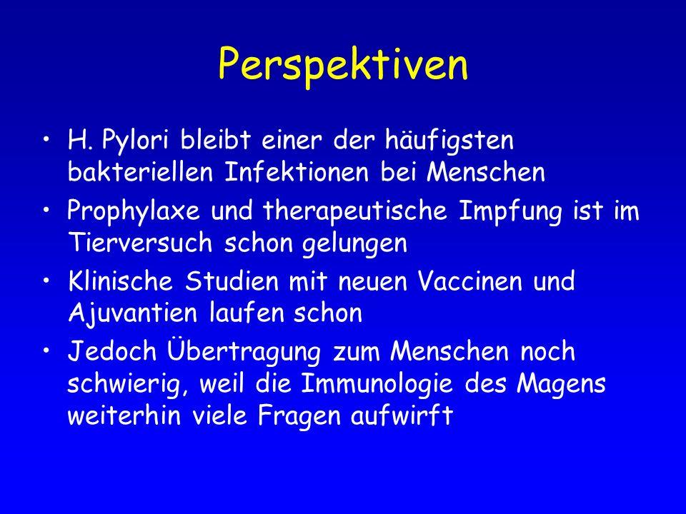 Perspektiven H. Pylori bleibt einer der häufigsten bakteriellen Infektionen bei Menschen.