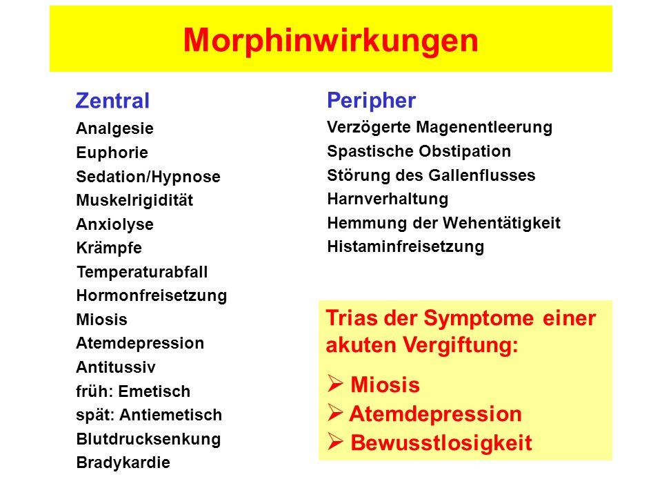 Morphinwirkungen Zentral Peripher