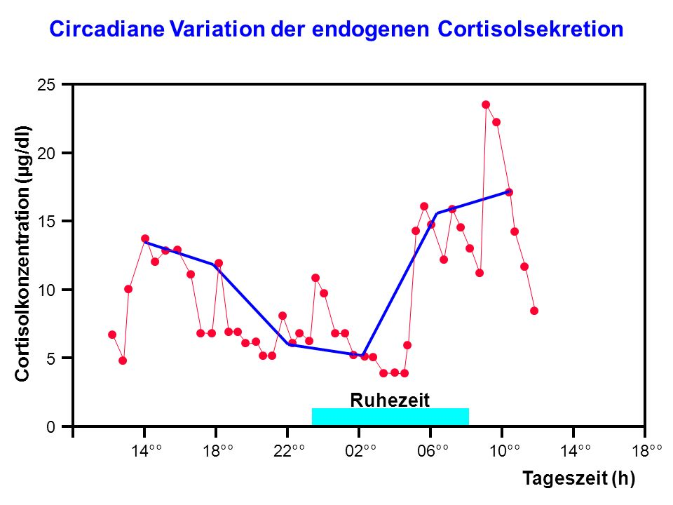 Circadiane Variation der endogenen Cortisolsekretion