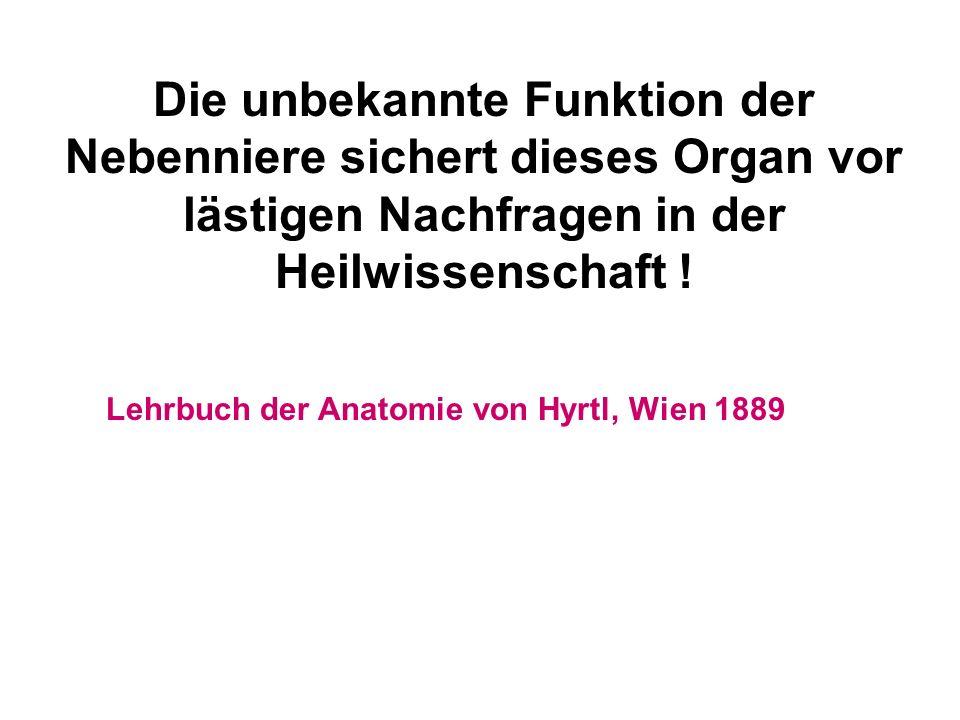 Die unbekannte Funktion der Nebenniere sichert dieses Organ vor lästigen Nachfragen in der Heilwissenschaft !