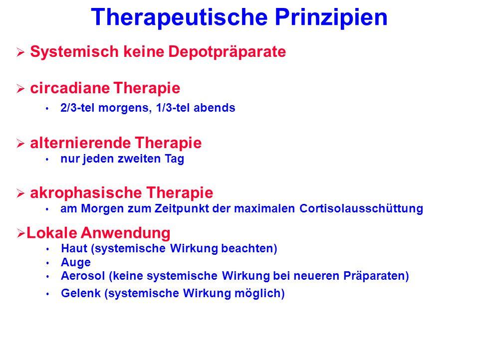 Therapeutische Prinzipien