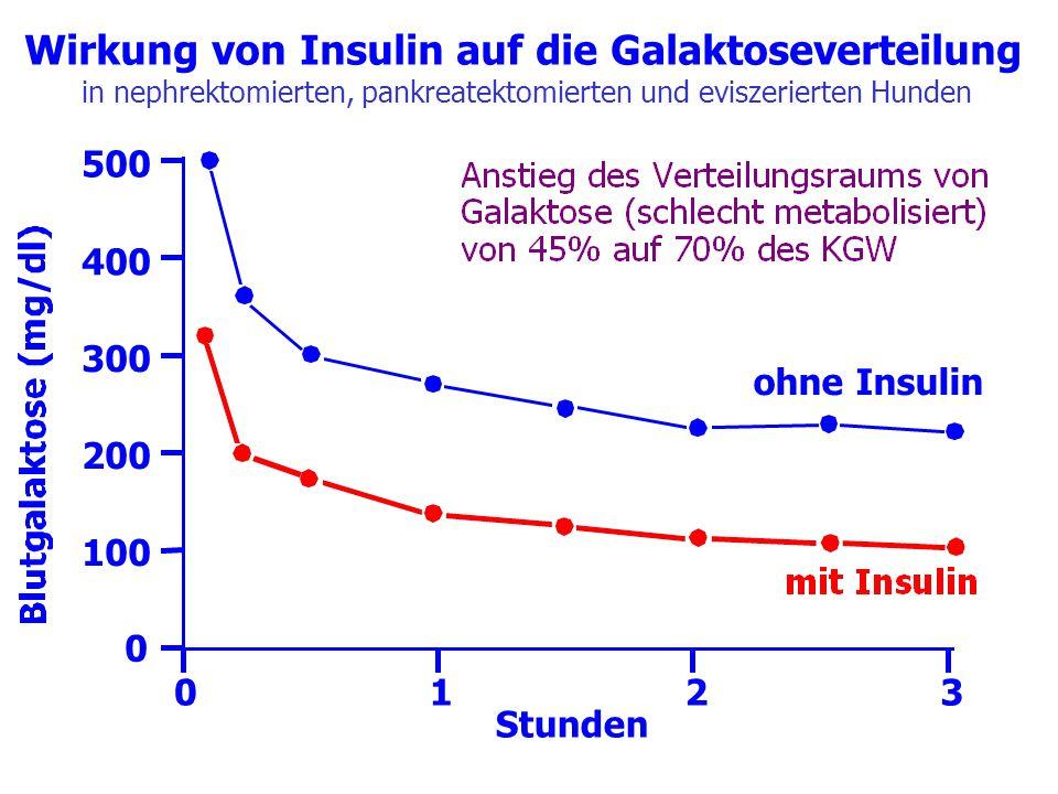 Wirkung von Insulin auf die Galaktoseverteilung