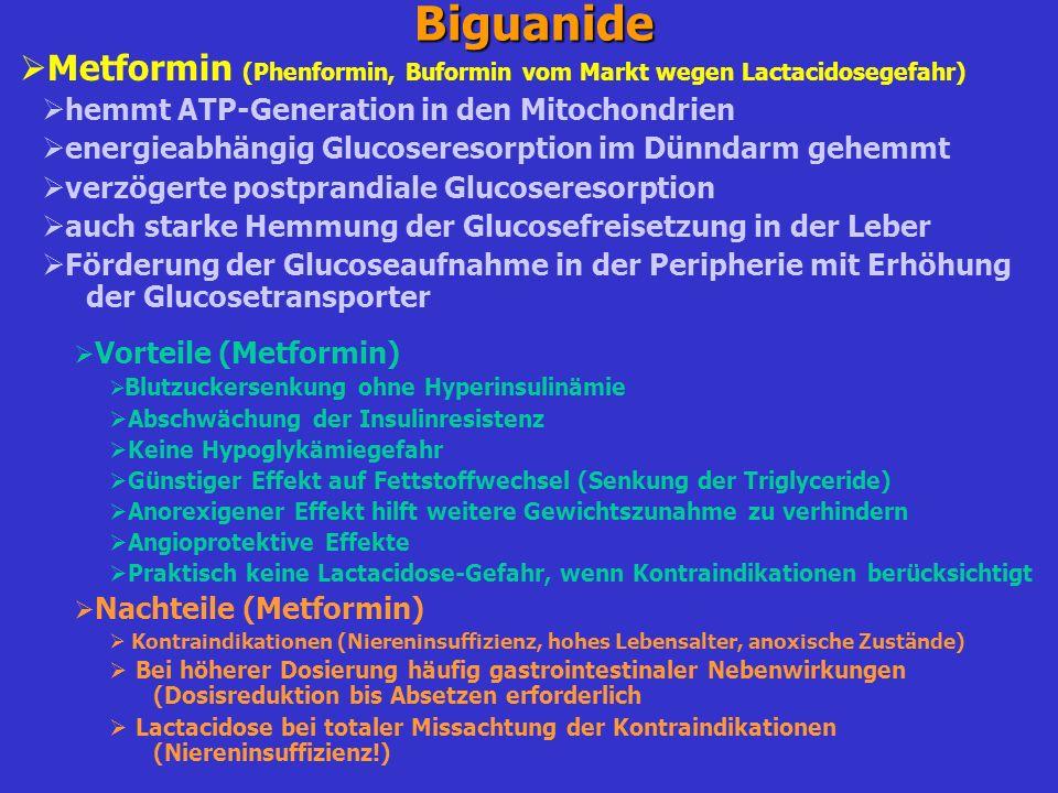 Biguanide Metformin (Phenformin, Buformin vom Markt wegen Lactacidosegefahr) hemmt ATP-Generation in den Mitochondrien.