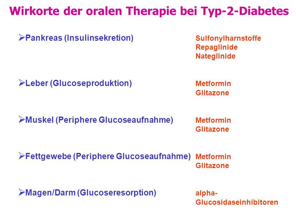 Wirkorte der oralen Therapie bei Typ-2-Diabetes