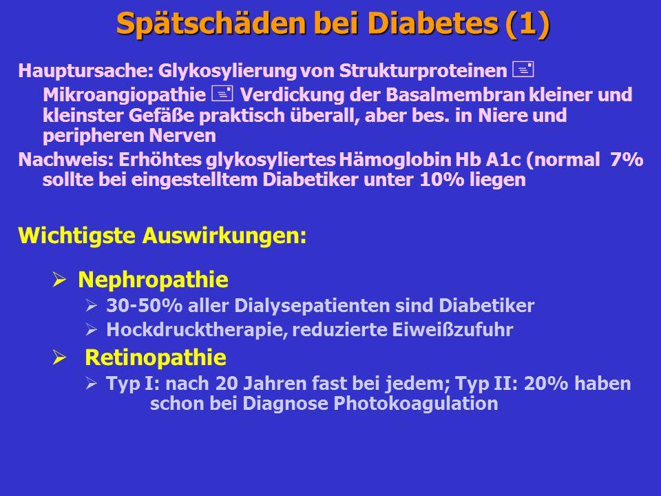 Spätschäden bei Diabetes (1)