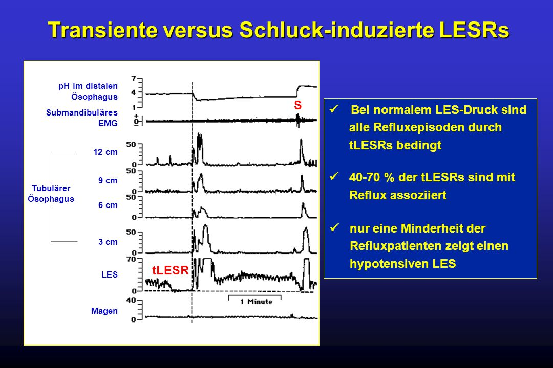 Transiente versus Schluck-induzierte LESRs