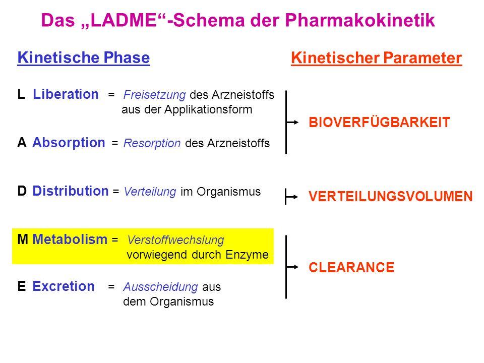 """Das """"LADME -Schema der Pharmakokinetik"""