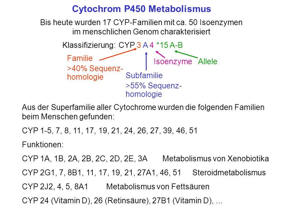 Cytochrom P450 Metabolismus