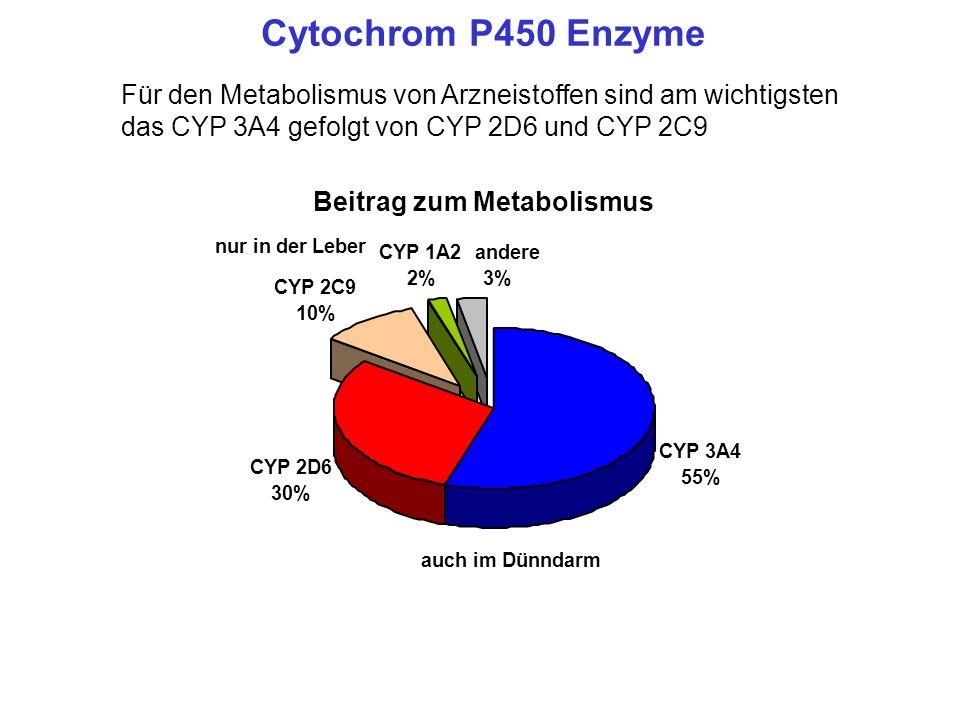 Cytochrom P450 Enzyme Für den Metabolismus von Arzneistoffen sind am wichtigsten das CYP 3A4 gefolgt von CYP 2D6 und CYP 2C9.