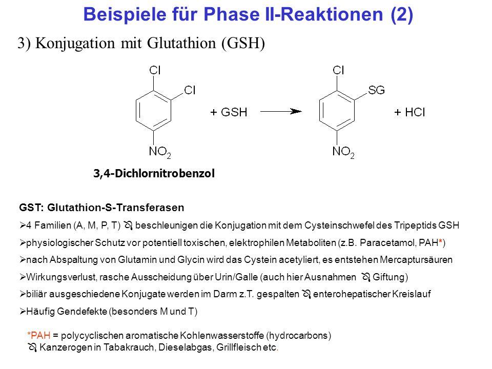 Beispiele für Phase II-Reaktionen (2)