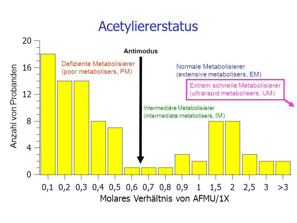 Acetyliererstatus Molares Verhältnis von AFMU/1X 20 16 12