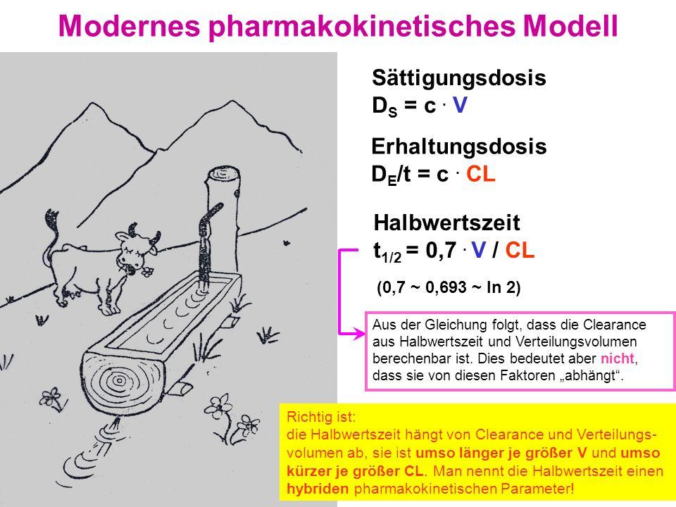 Modernes pharmakokinetisches Modell