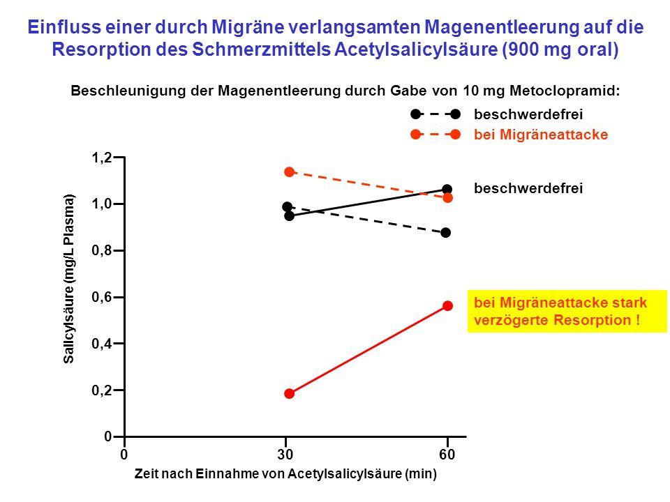 Beschleunigung der Magenentleerung durch Gabe von 10 mg Metoclopramid: