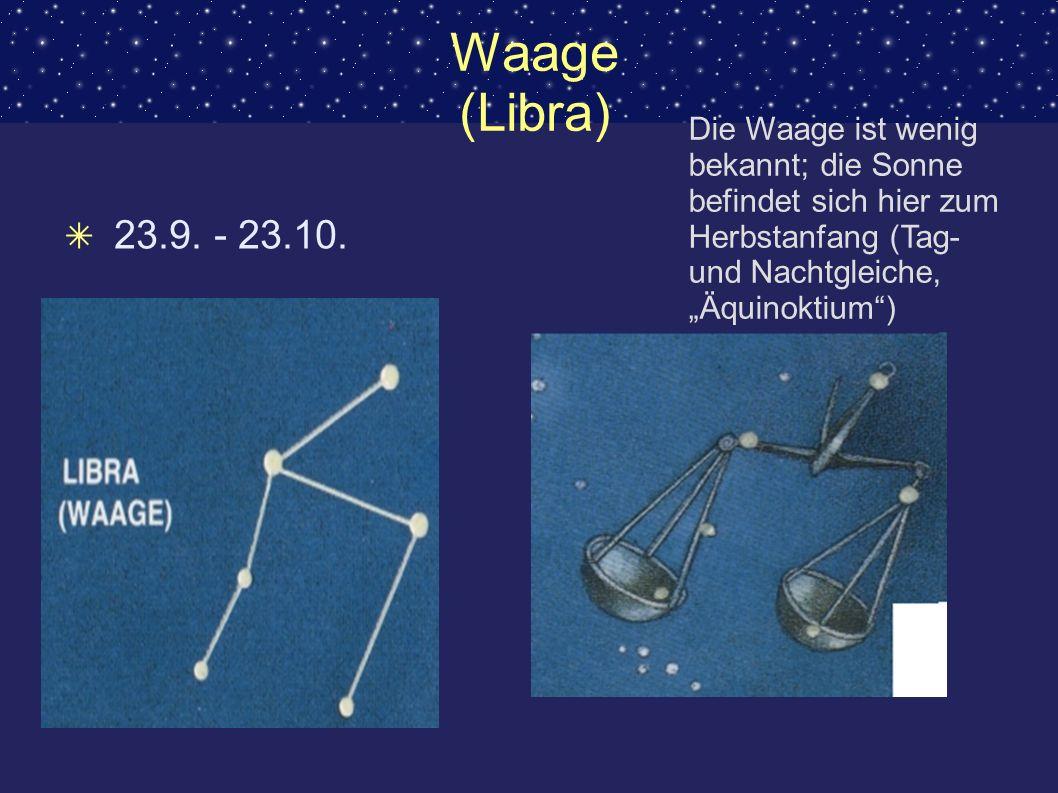 """Waage (Libra)Die Waage ist wenig bekannt; die Sonne befindet sich hier zum Herbstanfang (Tag- und Nachtgleiche, """"Äquinoktium )"""