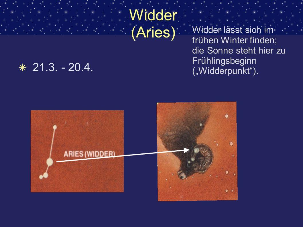 """Widder (Aries)Widder lässt sich im frühen Winter finden; die Sonne steht hier zu Frühlingsbeginn (""""Widderpunkt )."""