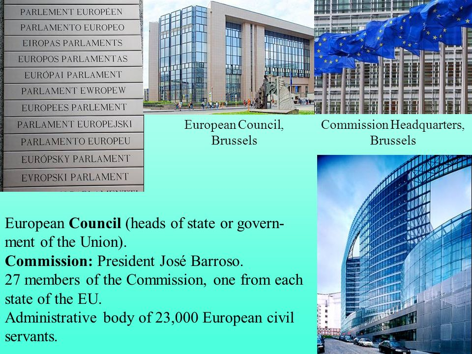European Council (heads of state or govern-ment of the Union).