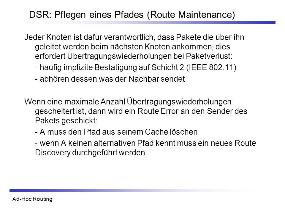 DSR: Pflegen eines Pfades (Route Maintenance)