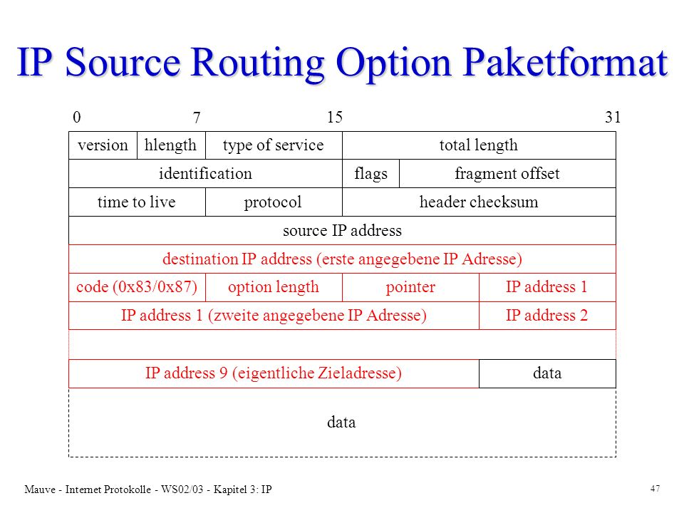 IP Source Routing Option Paketformat