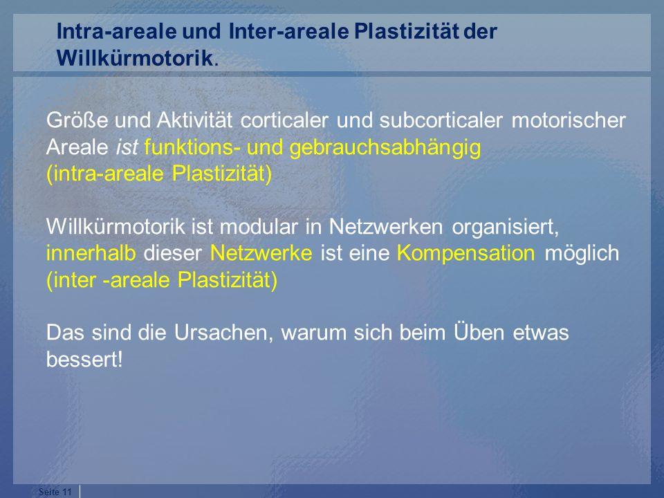 Intra-areale und Inter-areale Plastizität der Willkürmotorik.