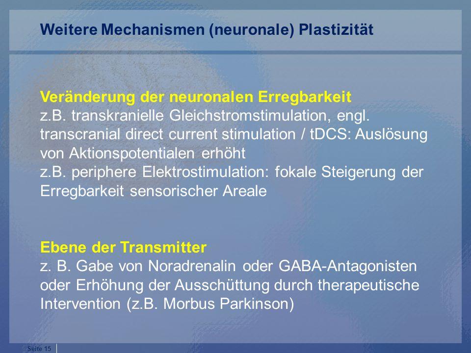 Weitere Mechanismen (neuronale) Plastizität