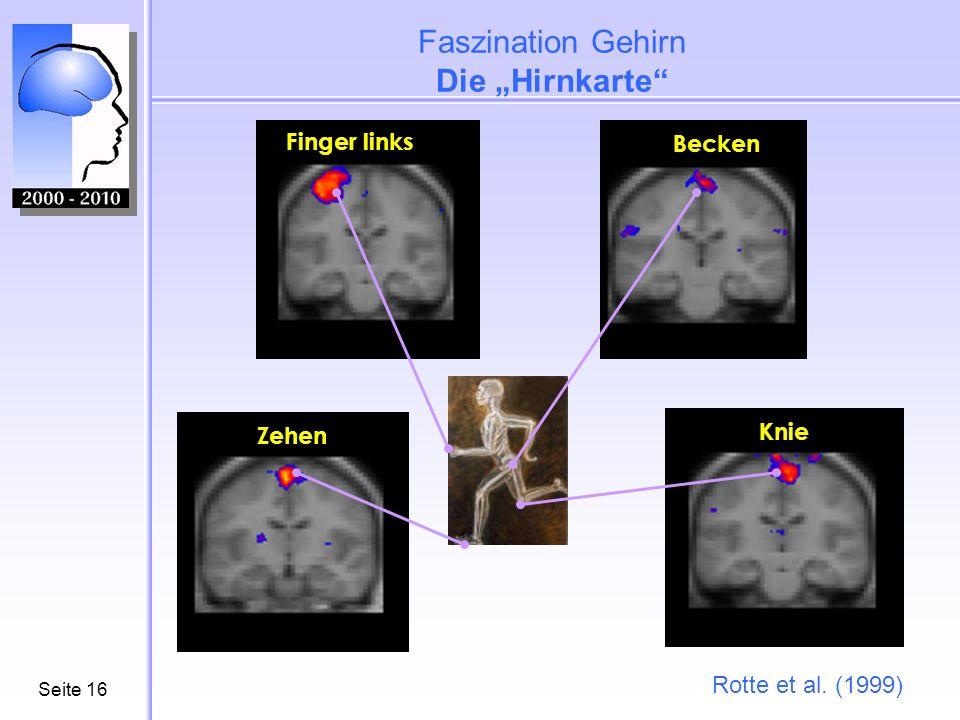 """Faszination Gehirn Die """"Hirnkarte"""