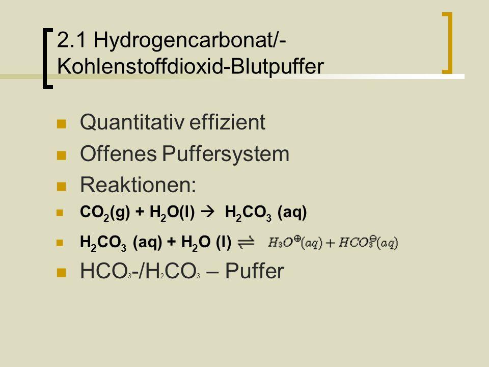2.1 Hydrogencarbonat/- Kohlenstoffdioxid-Blutpuffer
