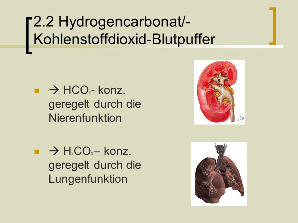 2.2 Hydrogencarbonat/-Kohlenstoffdioxid-Blutpuffer