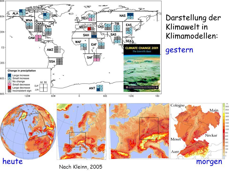 Darstellung der Klimawelt in Klimamodellen: