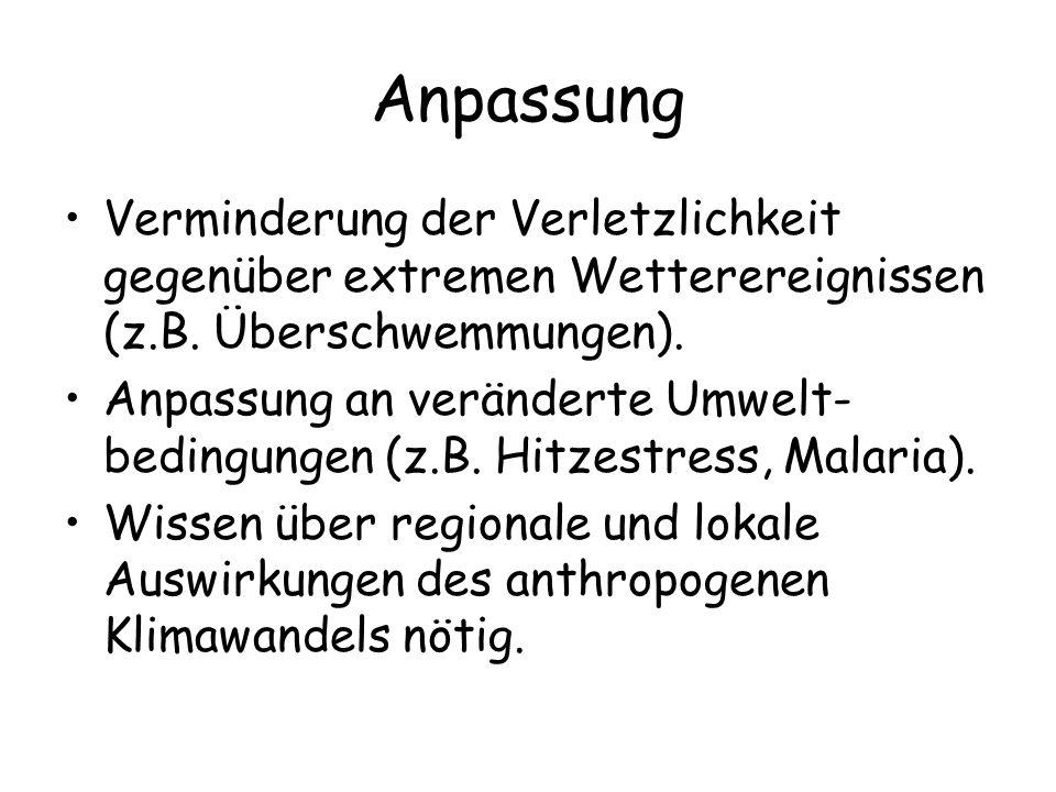 Anpassung Verminderung der Verletzlichkeit gegenüber extremen Wetterereignissen (z.B. Überschwemmungen).