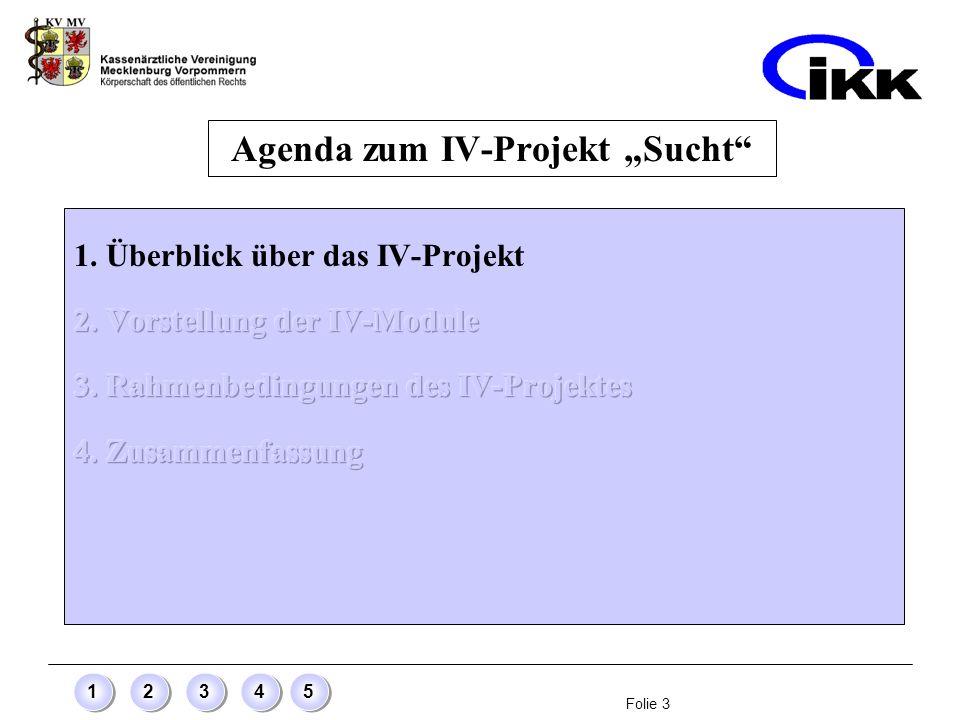"""Agenda zum IV-Projekt """"Sucht"""
