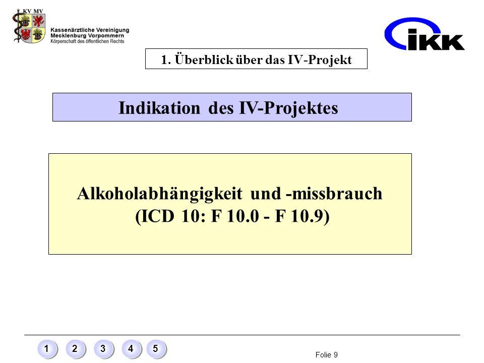 1. Überblick über das IV-Projekt