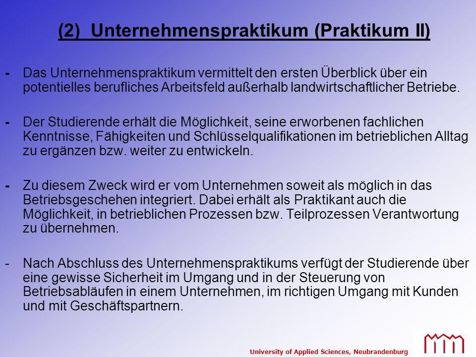 (2) Unternehmenspraktikum (Praktikum II)
