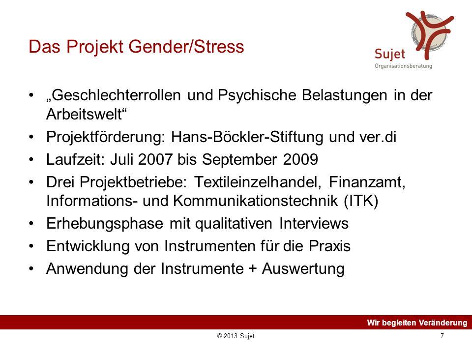 Das Projekt Gender/Stress