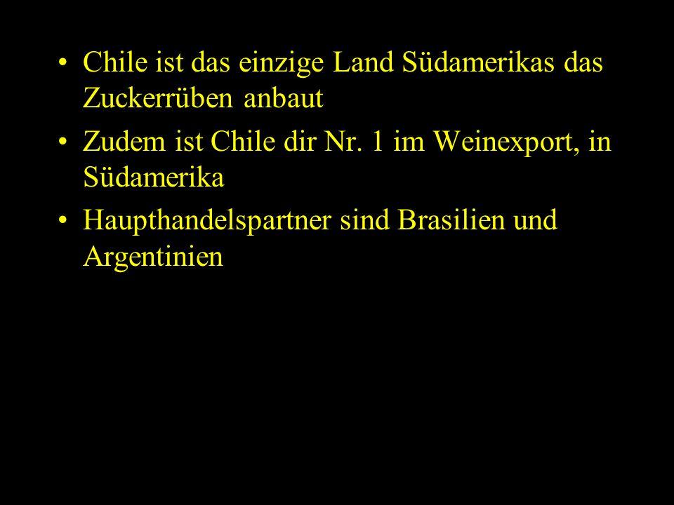 Chile ist das einzige Land Südamerikas das Zuckerrüben anbaut