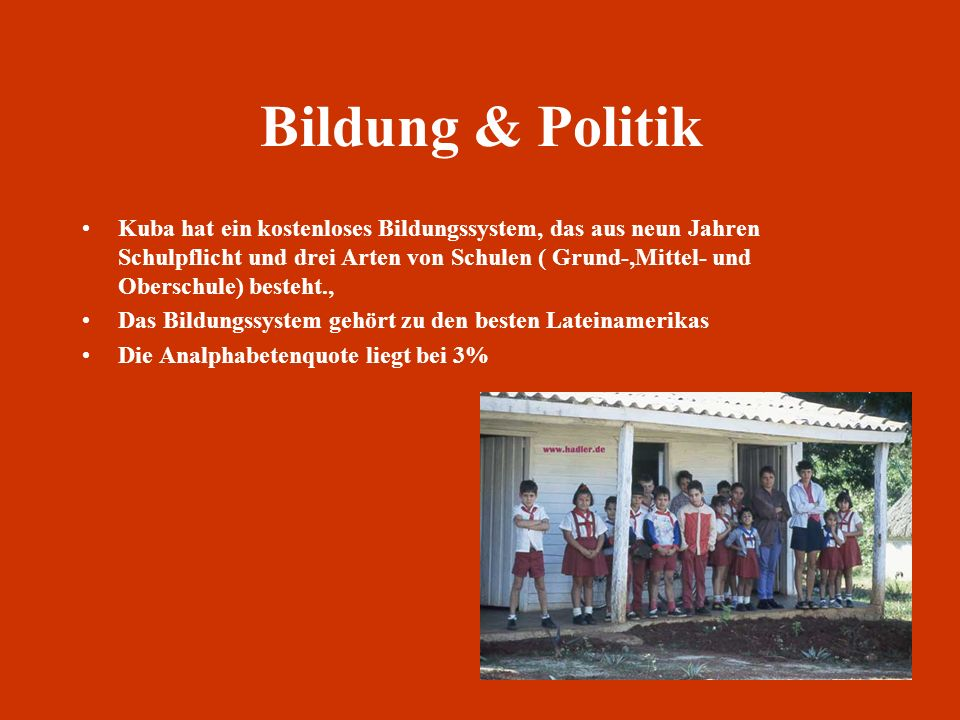 Bildung & Politik