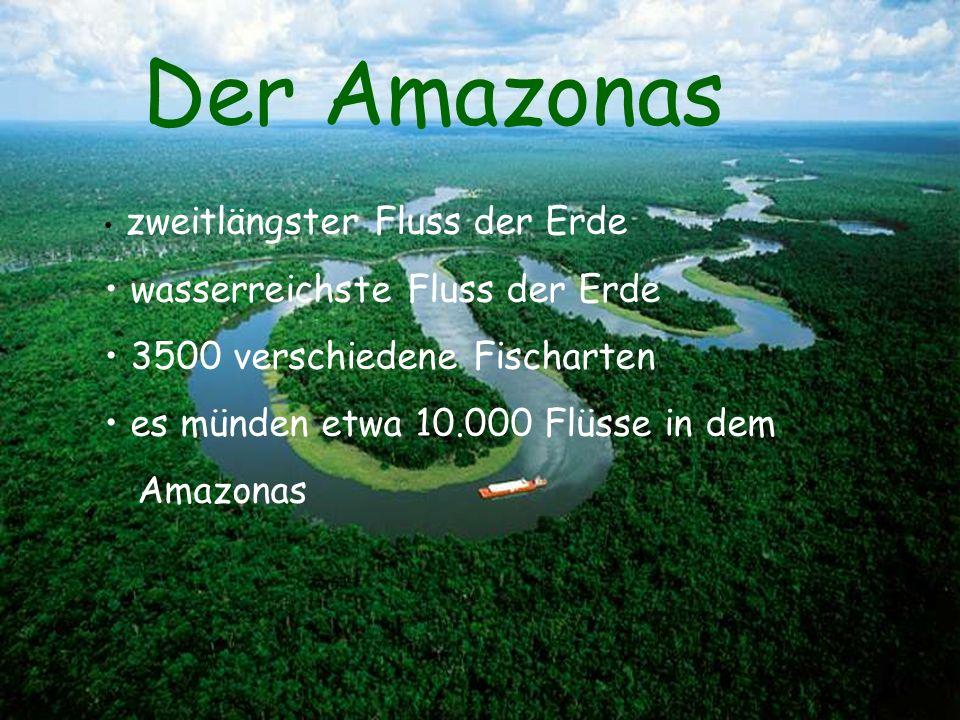 Der Amazonas wasserreichste Fluss der Erde