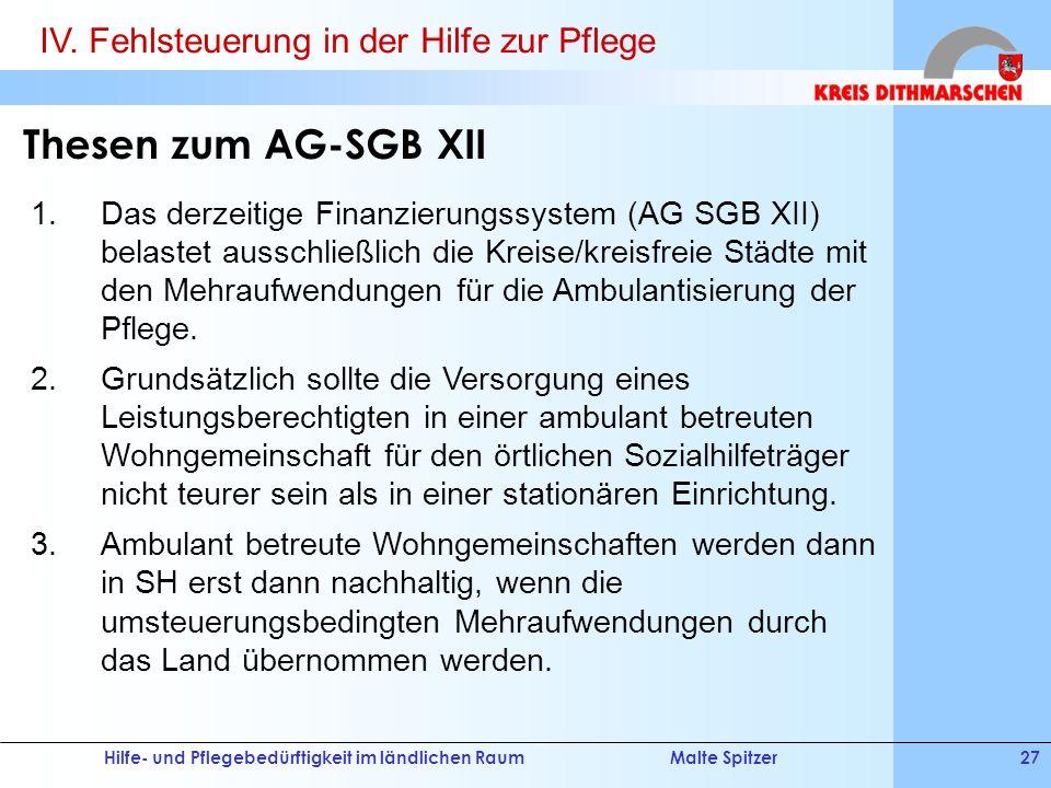 Thesen zum AG-SGB XII IV. Fehlsteuerung in der Hilfe zur Pflege