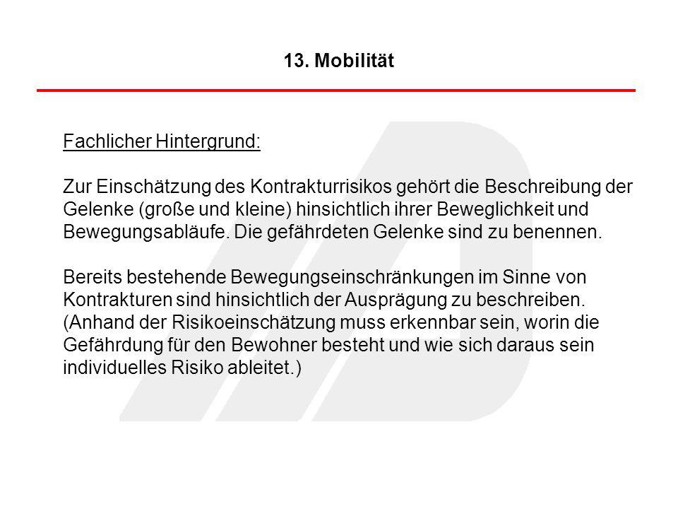 13. Mobilität Fachlicher Hintergrund: