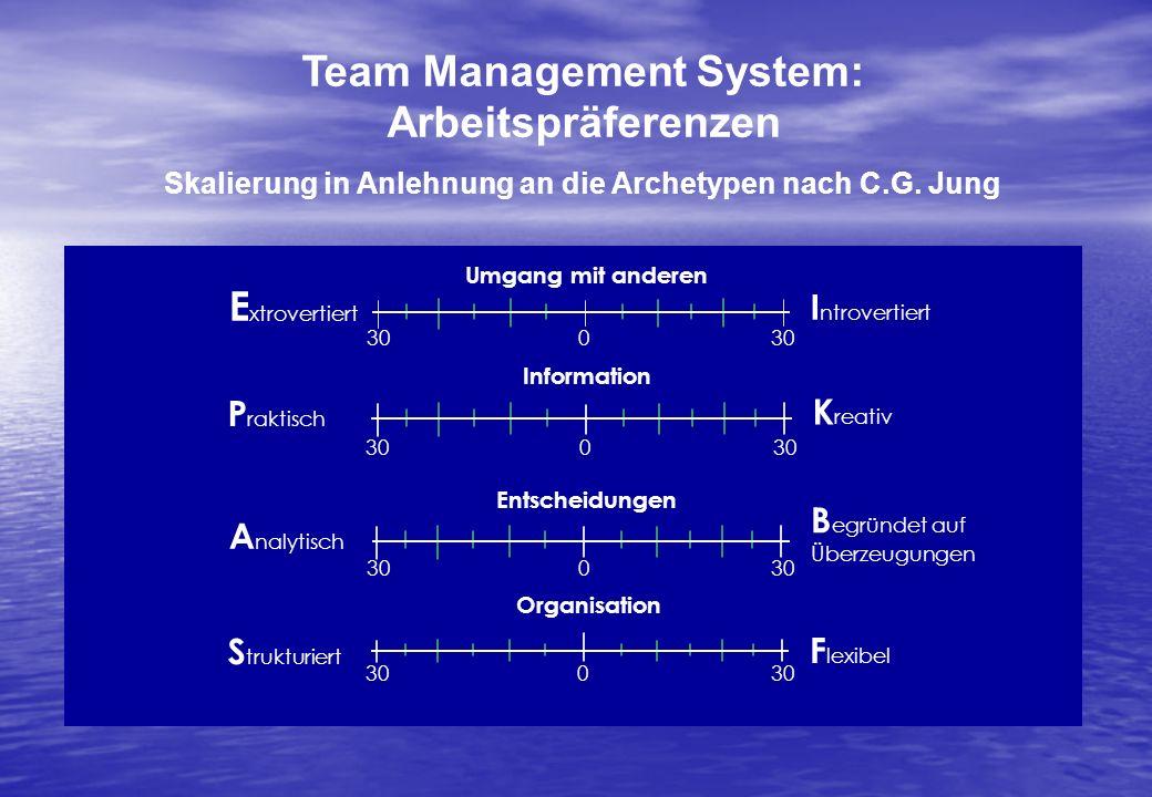 Team Management System: Arbeitspräferenzen