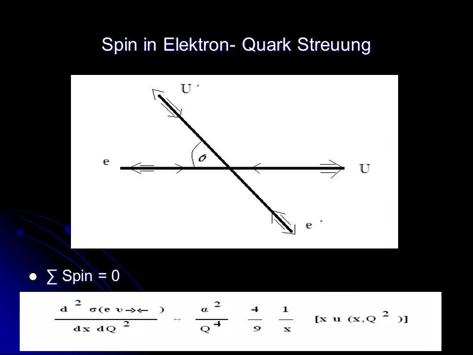 Spin in Elektron- Quark Streuung
