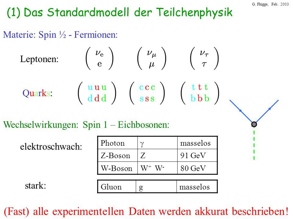 (1) Das Standardmodell der Teilchenphysik