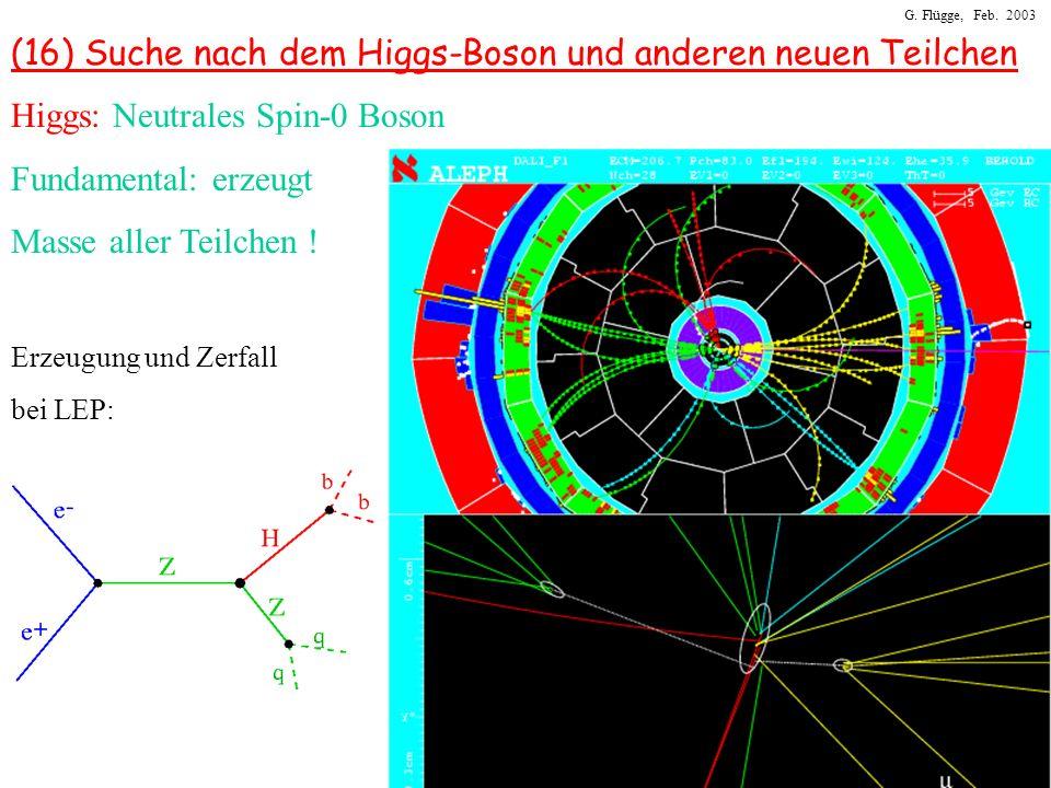 (16) Suche nach dem Higgs-Boson und anderen neuen Teilchen