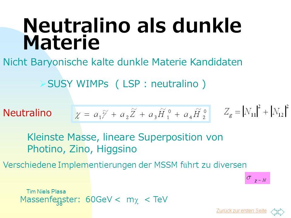 Neutralino als dunkle Materie