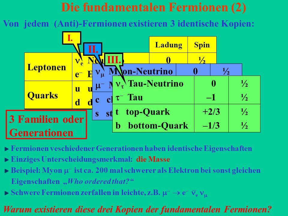 Die fundamentalen Fermionen (2)