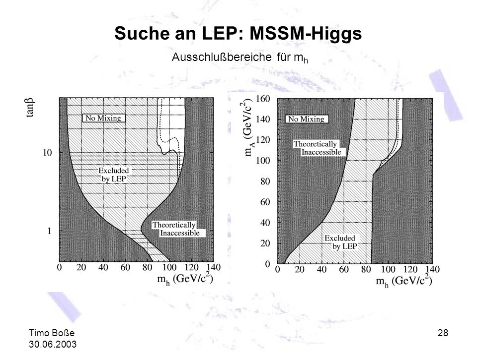 Suche an LEP: MSSM-Higgs